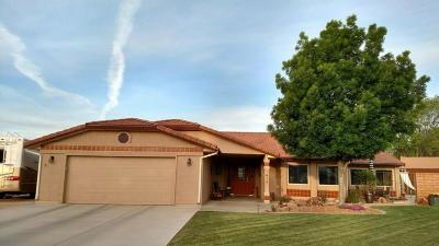St George Single Family Home For Sale: 1615 Apache Cir