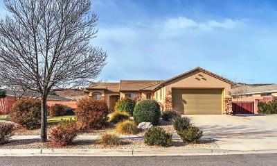 Washington Single Family Home For Sale: 1473 N Liberty Greens Dr