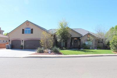 St George Single Family Home For Sale: 2628 E 1300 S