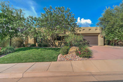 St George Single Family Home For Sale: 1732 W Red Cloud