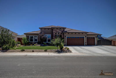 St George Single Family Home For Sale: 3066 E Aster Dr