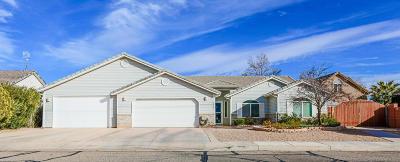 Washington County Single Family Home For Sale: 1786 Gubler Dr