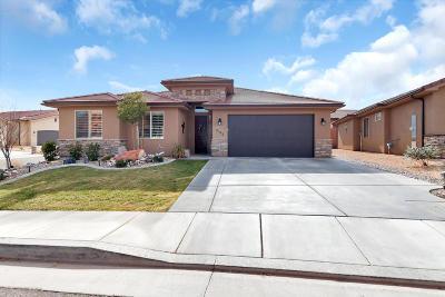 St George Single Family Home For Sale: 2182 E Colorado Dr