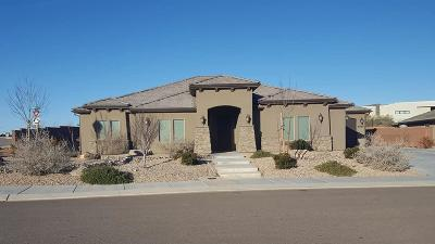 St George Single Family Home For Sale: 6090 S Zen Trail Way