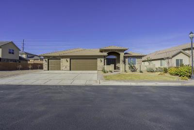 St George Single Family Home For Sale: 554 Rainier Dr