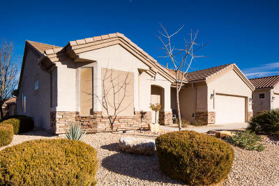 St George Single Family Home For Sale: 4859 S Morane Manor Dr