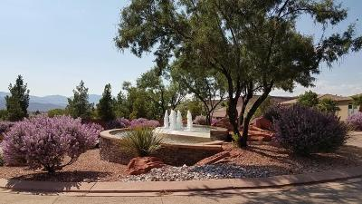 St George Single Family Home For Sale: 1554 N Hummingbird Dr