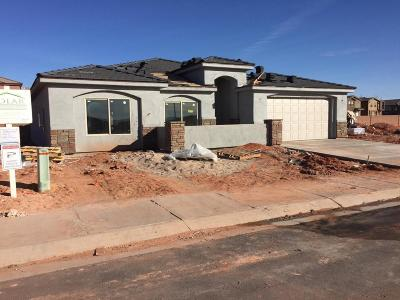 St George Single Family Home For Sale: 2797 E 430 N