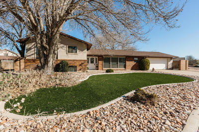 St George Single Family Home For Sale: 944 Gardenia