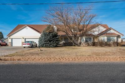 St George Single Family Home For Sale: 8385 N Sapphire