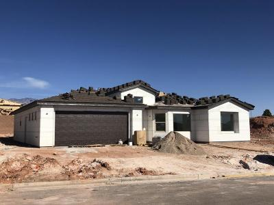 St George Single Family Home For Sale: 2835 410 N