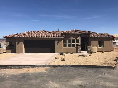 St George Single Family Home For Sale: 2985 Blueberry Cir E