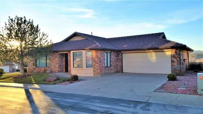 St George Single Family Home For Sale: 2398 S Canterbury Rd