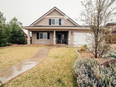 Ivins Single Family Home For Sale: 244 Main