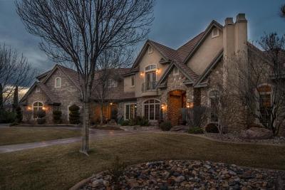 St George Single Family Home For Sale: 2323 E Bella Rosa Dr