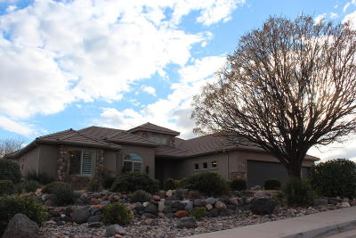 St George Single Family Home For Sale: 2530 2070 E