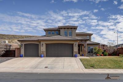 Washington Single Family Home For Sale: 541 S Ali Ln