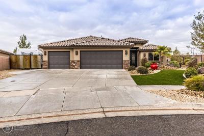 Washington Single Family Home For Sale: 597 N La Ruta Dr