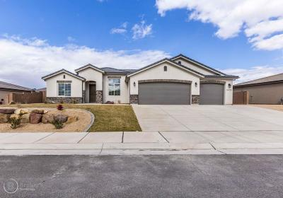 St George Single Family Home For Sale: 3405 E Chimney Rock
