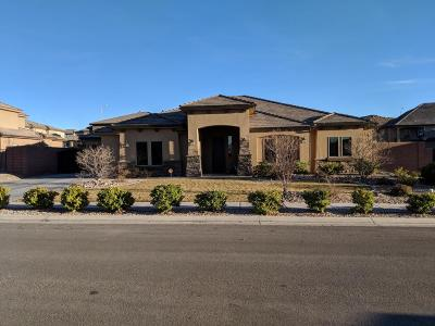 St George Single Family Home For Sale: 2818 Carmine Dr