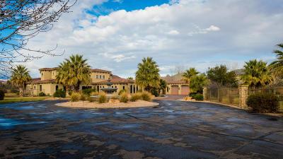 Washington Single Family Home For Sale: 2931 S 20 E