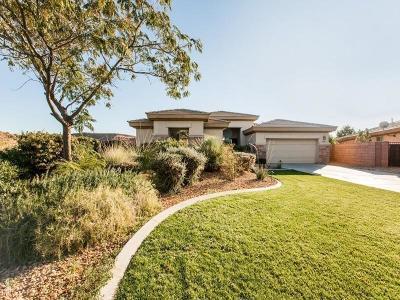 Washington Single Family Home For Sale: 2082 N Canyon Greens Cir