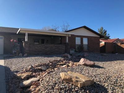 St George Single Family Home For Sale: 2030 Sherman Rd