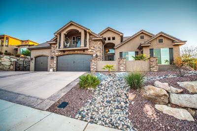Washington Single Family Home For Sale: 1066 E Bramble Way