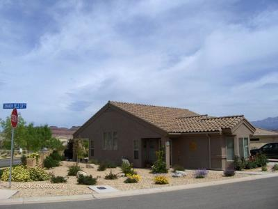 St George Single Family Home For Sale: 4602 S Cinnamon Field Cir