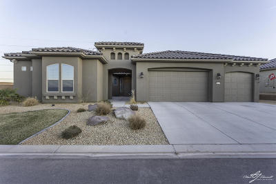 St George Single Family Home For Sale: 1373 W Grapevine Dr