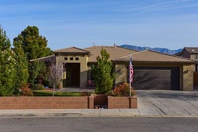Washington Single Family Home For Sale: 316 W 2350 S