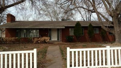 St George Single Family Home For Sale: 234 S Main