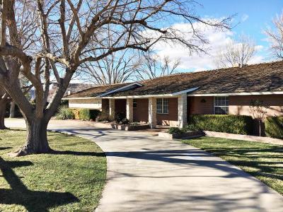 St George Single Family Home For Sale: 168 Sugar Leo