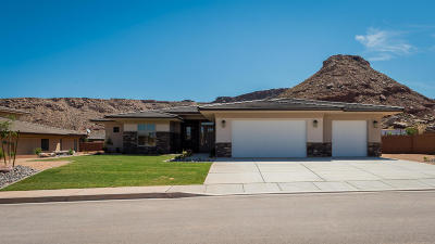 St George Single Family Home For Sale: 2101 S Shellee Dr