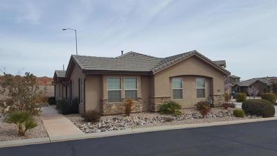 Washington Single Family Home For Sale: 653 E Bluff View Ln