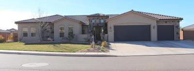 St George Single Family Home For Sale: 2674 S 3160 E
