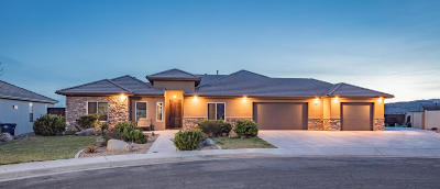 St George Single Family Home For Sale: 857 Crystal Dr