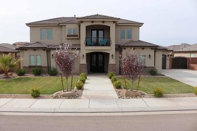 St George Single Family Home For Sale: 3530 E Broken Mesa