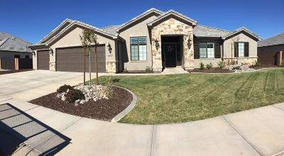 St George Single Family Home For Sale: 2157 E Pasture
