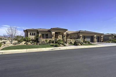 St George Single Family Home For Sale: 2043 E Stone Canyon Dr