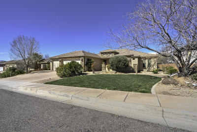 St George Single Family Home For Sale: 2433 E 2860 S