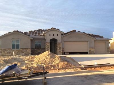 St George UT Single Family Home For Sale: $334,900