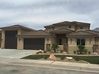 St George Single Family Home For Sale: 3399 E Rimrunner Dr