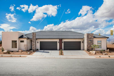 St George Single Family Home For Sale: 4780 S Martin Dr