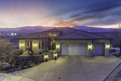 St George Single Family Home For Sale: 1688 Glen Canyon Cir