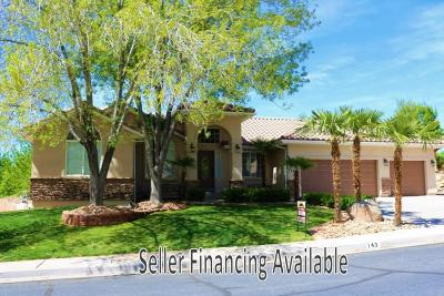 St George Single Family Home For Sale: 143 N 1100 W