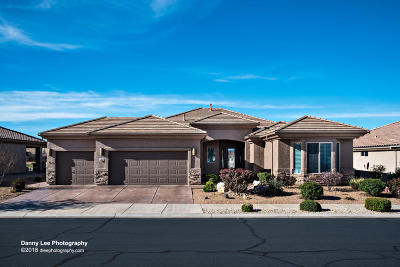 St George UT Single Family Home For Sale: $449,000