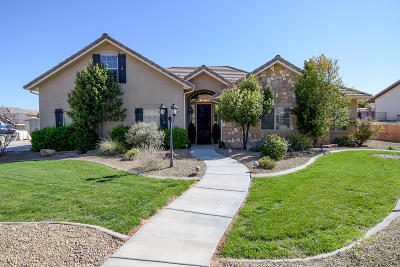 St George Single Family Home For Sale: 1707 Shivwits Dr