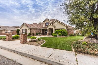 St George Single Family Home For Sale: 1379 Baneberry Dr