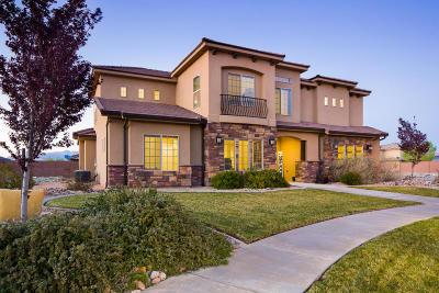 St George Single Family Home For Sale: 2941 E Auburn Cir